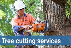 treecuttingservices
